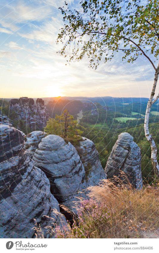 Good morning! Good morning! Elbsandstone mountains Sunrise Rock Mountain Dresden rathen Saxony Vantage point Attraction Tourism Tourist Attraction