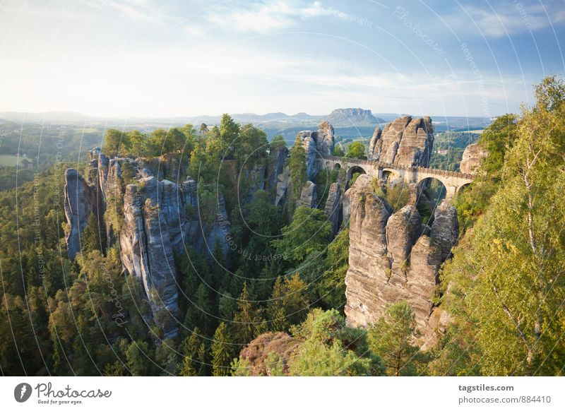 Nature Vacation & Travel Relaxation Forest Mountain Travel photography Architecture Rock Germany Idyll Tourism Vantage point Bridge Card Tourist Attraction