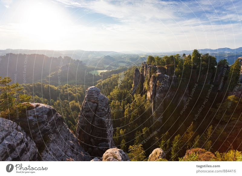 nature Elbsandstone mountains Sunrise Rock Mountain Dresden rathen Saxony Vantage point Attraction Tourism Tourist Attraction Vacation & Travel Relaxation