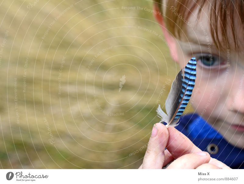 Human being Child Blue Animal Forest Face Playing Bird Leisure and hobbies Infancy Feather Trip Fingers Uniqueness Curiosity Discover
