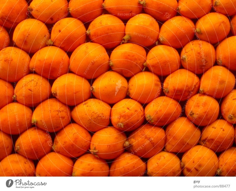orange landscape Orange Nutrition Fruit Vegetarian diet Food Fruit- or Vegetable stall Orderliness Row Vitamin Healthy
