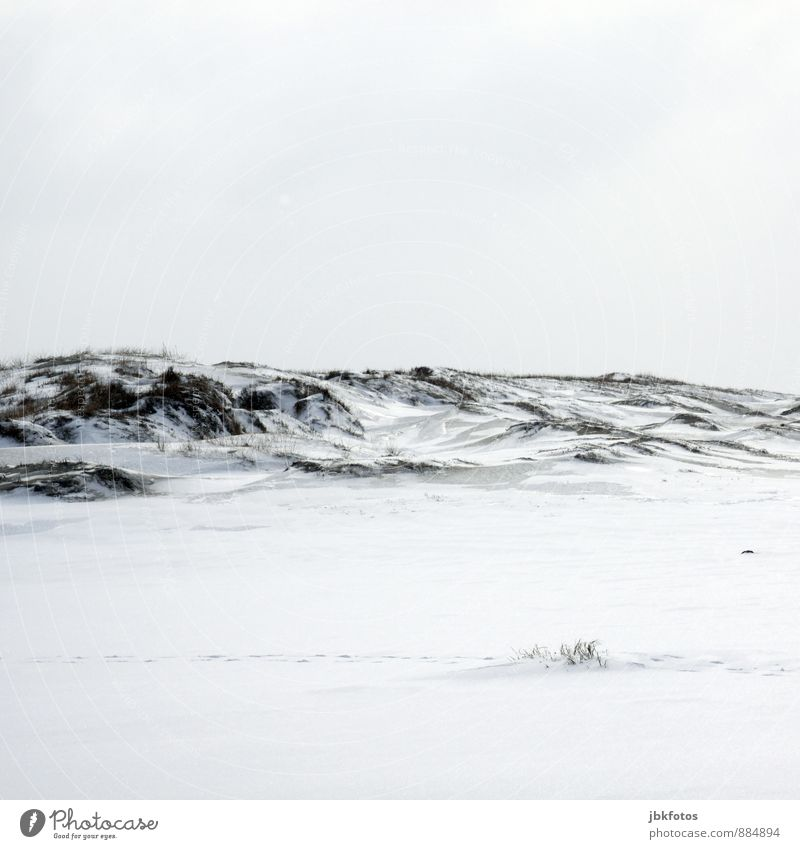 Peace / White... Elements Sky Winter Climate Climate change Weather Beautiful weather Ice Frost Snow Grass North Sea Baltic Sea Discover Free Fresh Healthy Cold