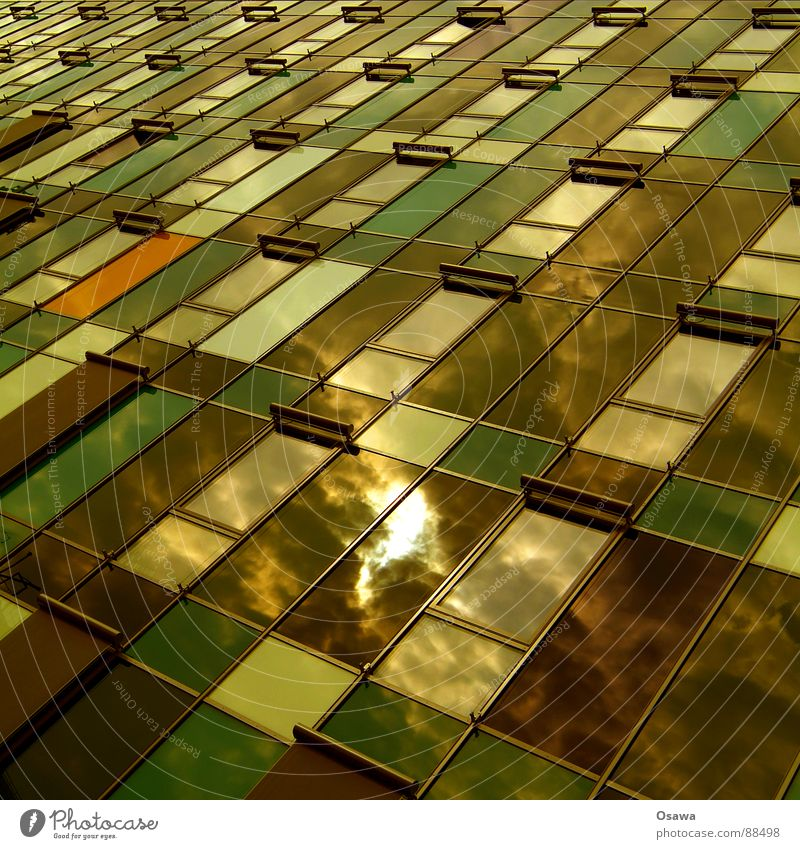 Beautiful living 19 Building Facade Office building Window High-rise Grid New building Reflection Clouds Green Brown Modern Sun Weather protection Architecture
