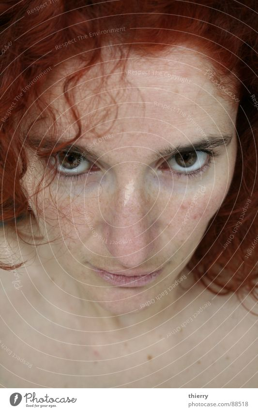 u gonna look @ me Style Trust woman red redhead eyes brown fair skin challenging light skin caucasion dye focus intense