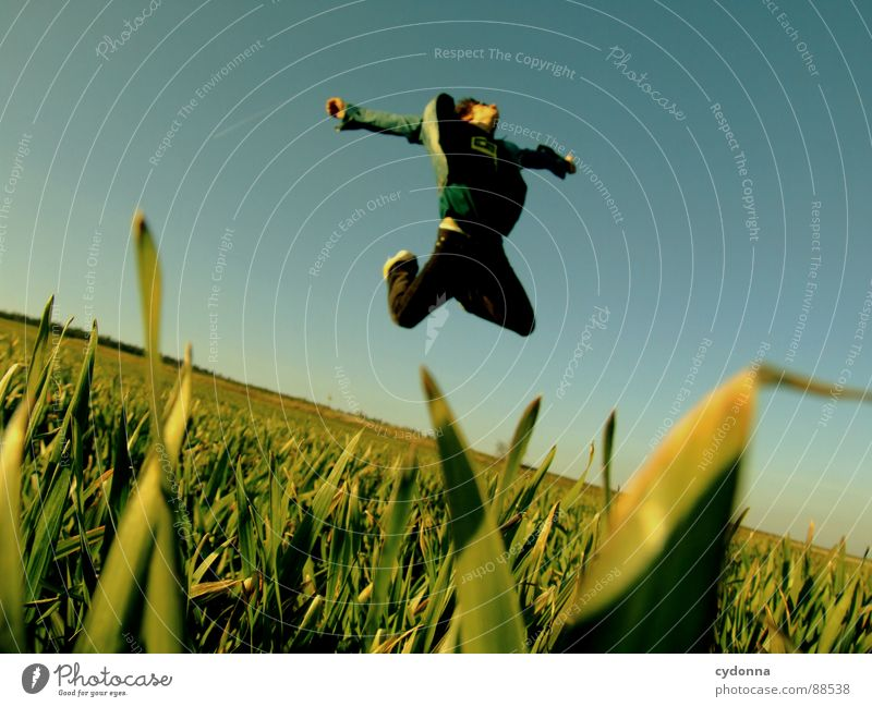 Jump into the field! V Hop Spring Meadow Grass Green Style Sunset Posture Blade of grass Worm's-eye view Sunbeam Kick Martial arts Man Fellow Field Straddle