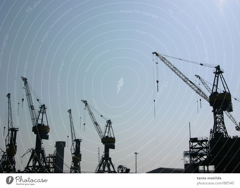 Hamburg Docklands Crane Silhouette Black Harbour Shadow Sky Blue