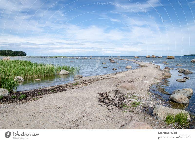 Saartneem Nature Landscape Sand Water Common Reed Rock Coast Baltic Sea Käsmu Laheema National Park Estonia Europe Idyll Vacation & Travel Colour photo