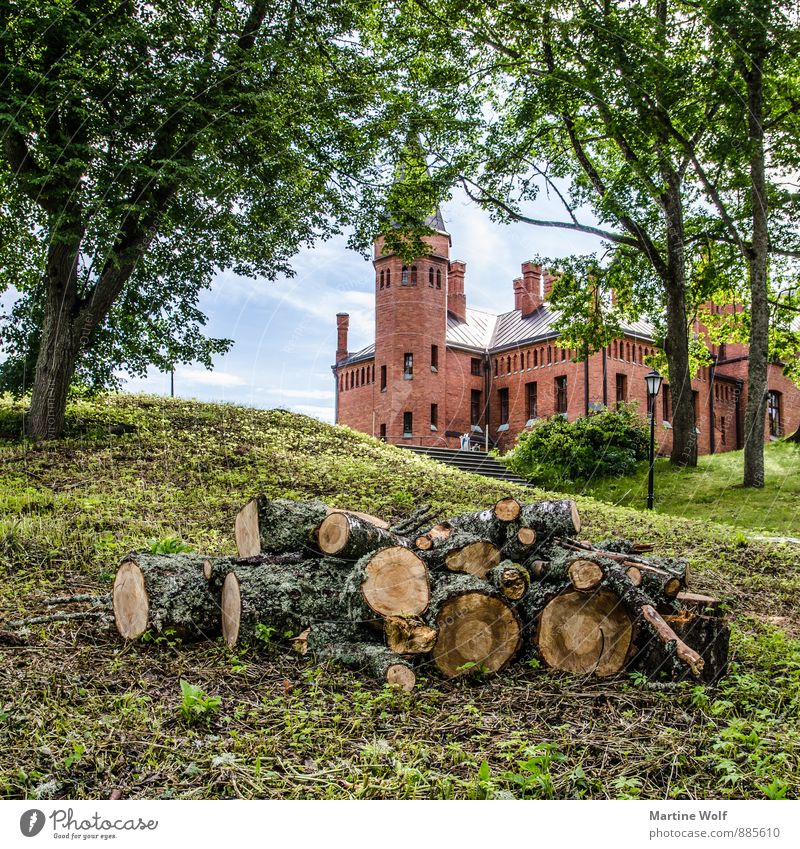 Songaste loss singing guest Estonia Europe Castle Tourist Attraction Town Logging Urbanization Tree trunk Death of a tree Colour photo Exterior shot Deserted