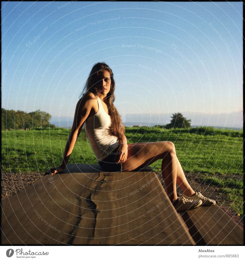 analogue portrait of a young, sporty, long-legged woman sitting in the evening sun on a wooden table Trip Young woman Youth (Young adults) 18 - 30 years Adults