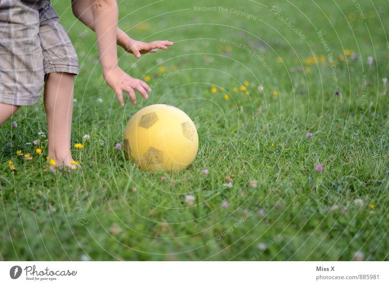 Human being Child Joy Emotions Meadow Boy (child) Sports Playing Legs Moody Leisure and hobbies Infancy Arm Walking Soccer Foot ball