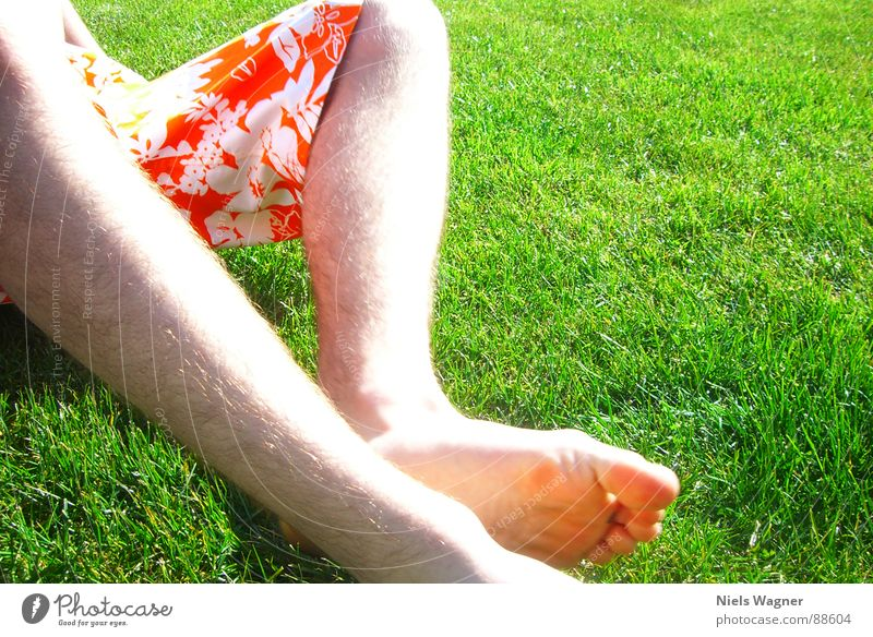 chillin in da sun Grass Light Pants Green Meadow Physics Spring Toes Sleep Sun Legs Skin Orange Warmth Feet Hair and hairstyles Fatigue Barefoot