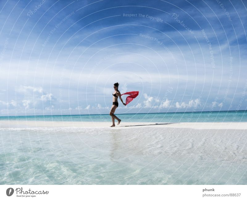 Woman Water Beautiful Vacation & Travel Sun Ocean Summer Beach Joy Playing Jump Bright Weather Walking Romance Clarity