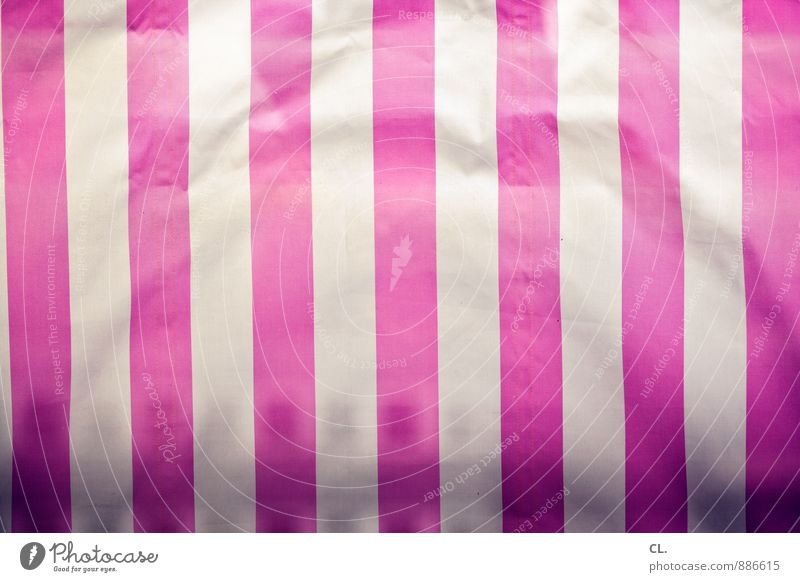 White Line Pink Esthetic - a Royalty Free Stock Photo from