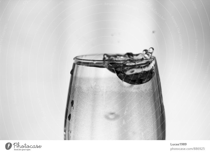 Drops in the glass Beverage Drinking Cold drink Drinking water Wine Wine glass Glass Dripping Black & white photo Interior shot Copy Space left Copy Space right
