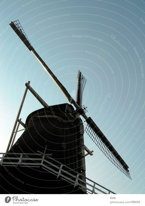 windmill 1 Sky Old-school Minimal Industry Wind Energy industry old maggot minimalistic Farm blue contrast sway