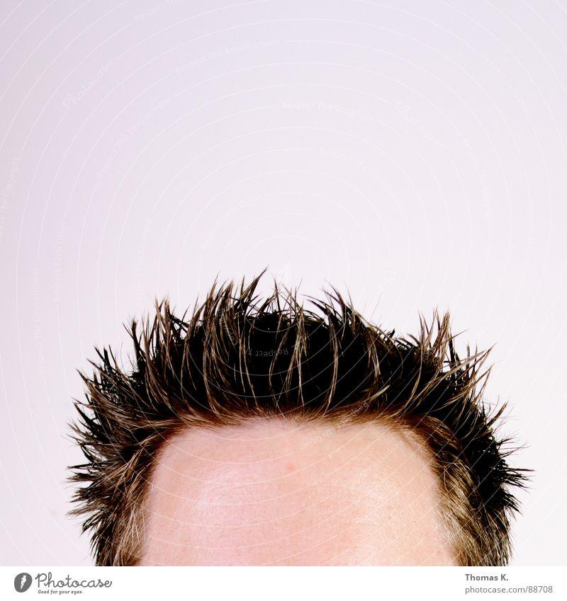 Man Head Hair and hairstyles Style Skin Hairdresser Thorny Forehead Haircut Gel Hairline Hair gel Receding hairline