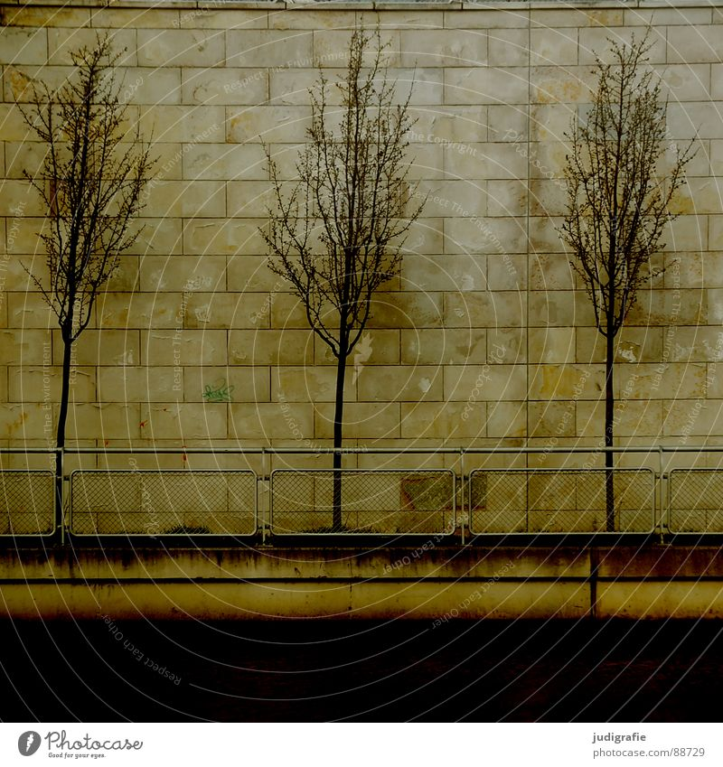 Nature Tree City Plant Wall (building) Wall (barrier) 2 Coast 3 Gloomy Row Handrail Hannover Sewer Beaded Side by side