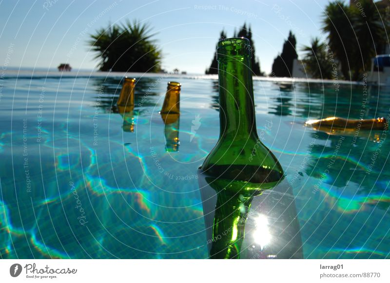 Things in the pool 2 Palm tree Bottle of beer Bottle of wine Turquoise Green Brown Summer Sun Brilliant Float in the water Multicoloured Still Life Hover