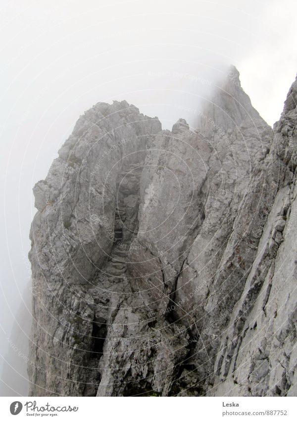 Climb into the fog Elements Sky Fog Alps Mountain Going Looking Hiking Sharp-edged Gray Respect Adventure Effort Surrealism Future Rock Lanes & trails Stairs