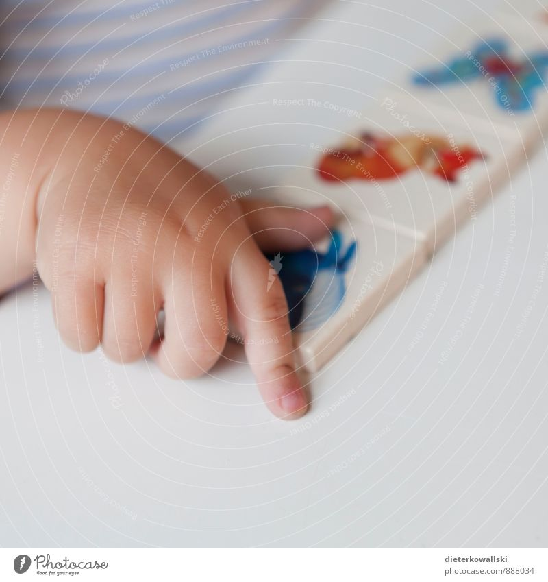 Small Hand Playing Kindergarten Child Study Girl Infancy Fingers Joy Happy Colour photo Interior shot Copy Space bottom