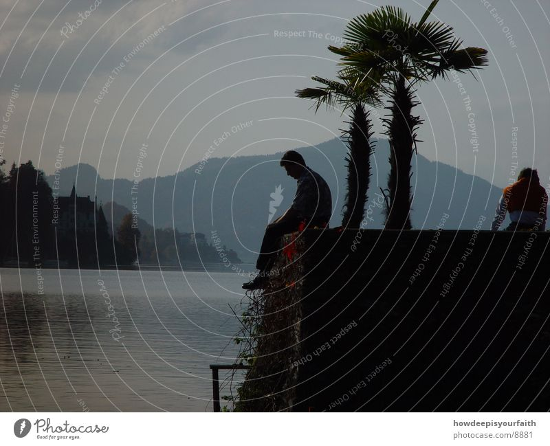 Misty Lake Palm tree Man Think Thought Mountain Sit Evening Freedom ponder