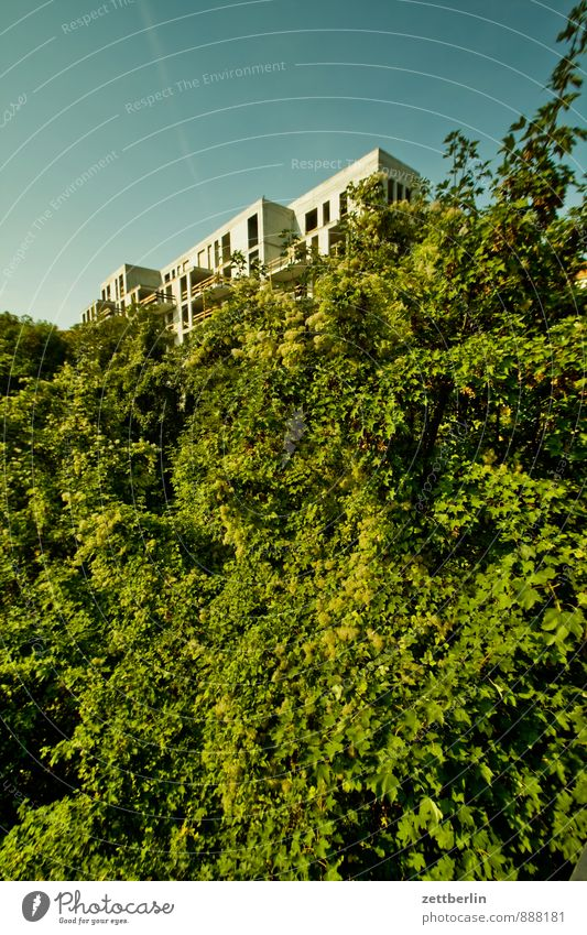 Sky Nature City Plant Tree Leaf House (Residential Structure) Window Architecture Berlin Facade Flat (apartment) Modern Bushes Concrete Vantage point