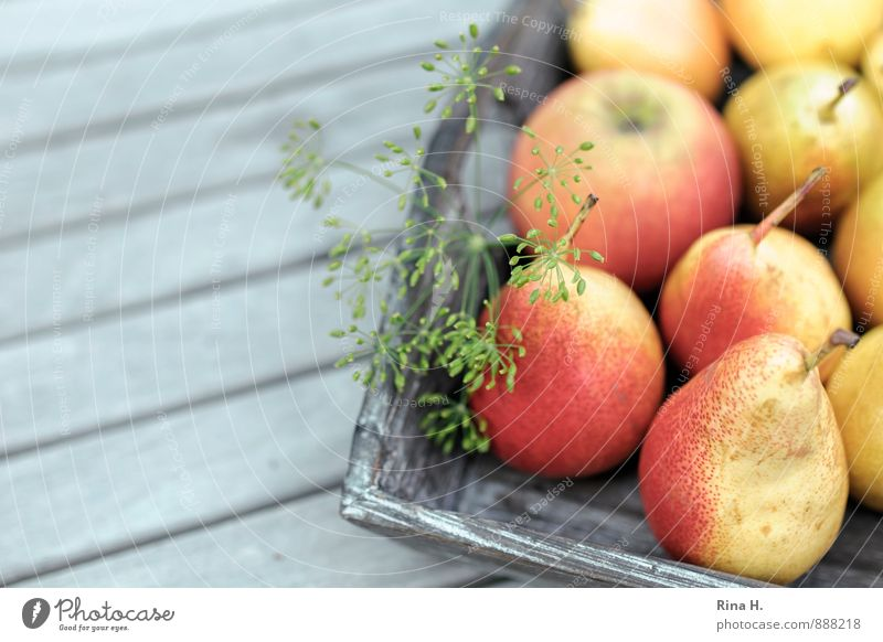 Rich harvest Fruit Organic produce Vegetarian diet Fresh Healthy Delicious Red Joie de vivre (Vitality) Harvest Apple Pear Dill Wooden table Vitamin