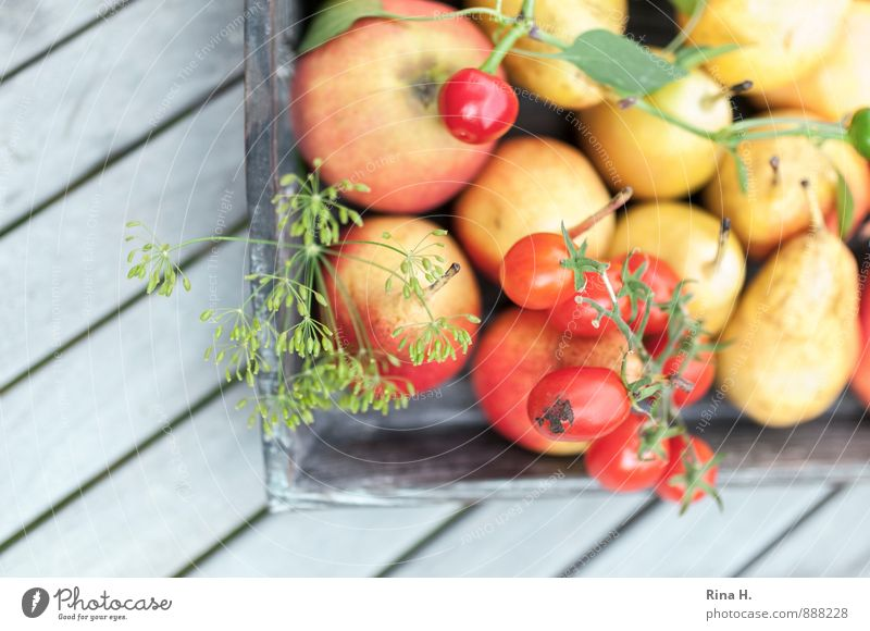 Red Yellow Healthy Fruit Fresh Nutrition Joie de vivre (Vitality) Vegetable Delicious Harvest Apple Organic produce Vitamin Tomato Vegetarian diet Country life