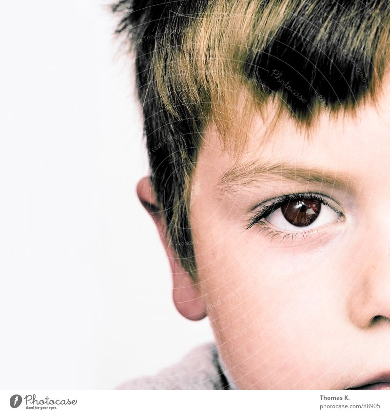 Human being Child Calm Eyes Boy (child) Nose Ear Concentrate Haircut