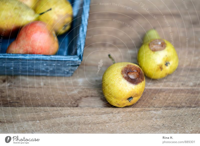 windfall Fruit Organic produce Vegetarian diet Joie de vivre (Vitality) pears Pear Spoiled Windfall Wooden table Harvest Colour photo Deserted Copy Space bottom