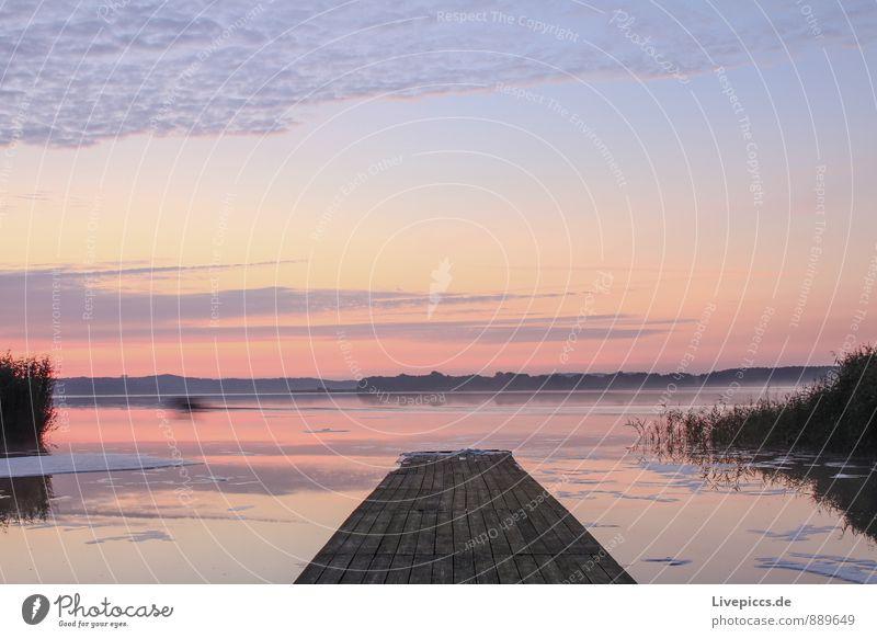 at the wheelhouse on Rügen Vacation & Travel Freedom Summer Sun Island Environment Nature Landscape Plant Water Sky Clouds Sunrise Sunset Sunlight