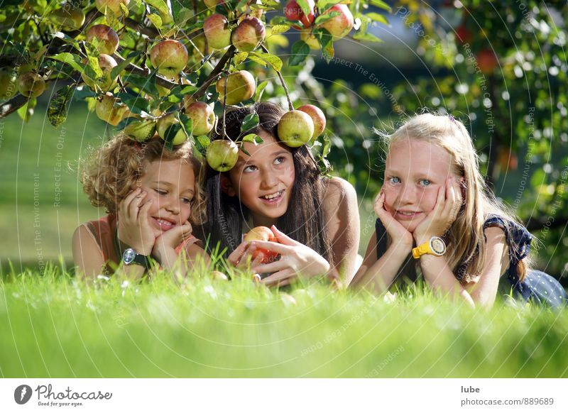 apple girls Food Fruit Apple Healthy Garden Human being Girl Infancy 3 8 - 13 years Child Nature Landscape Autumn Meadow Natural Joy Happiness Contentment
