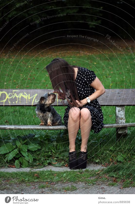 . Feminine 1 Human being 18 - 30 years Youth (Young adults) Adults Park Meadow Park bench Dress Brunette Long-haired Animal Pet Dog Sympathy Friendship Together