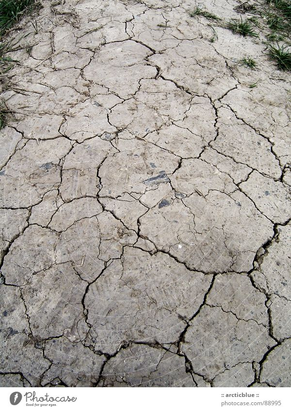 boulevard Dry Hot Silhouette Footpath Footprint Physics Gray Steppe Broken up Crust Hard Indecisive Grass Summer Drought Carbon dioxide Natural gas Greenhouse