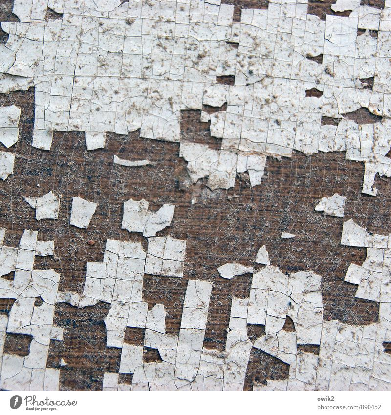 puff pastry To dry up Old Dirty Thin Authentic Sharp-edged Small Near Trashy Dry Crazy Decline Transience Lose Destruction Paint traces Flake off dilapidated