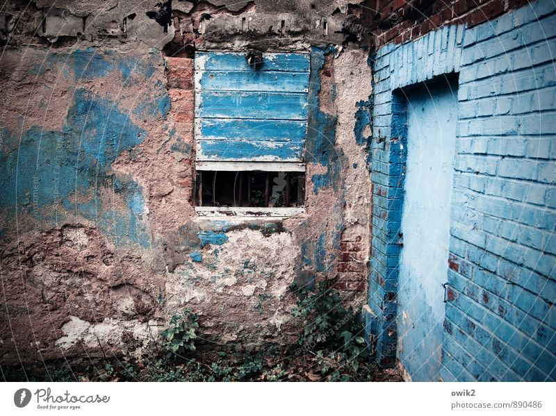Old Blue Window Wall (building) Wall (barrier) Art Moody Facade Fresh Crazy Transience Culture Planning Change Pure Derelict