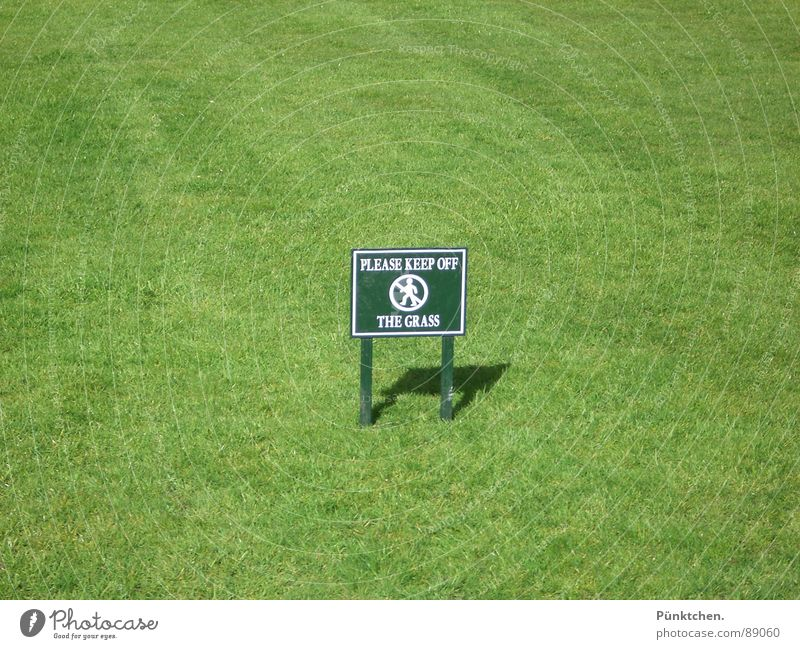 Green Summer Meadow Grass Spring Garden Park Signs and labeling Lawn To go for a walk Leisure and hobbies London England Bans Caution Text