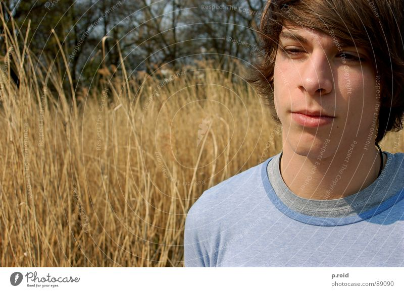 Man Youth (Young adults) Summer Warmth Brown Free Fresh Physics Flexible Single-minded Portrait photograph