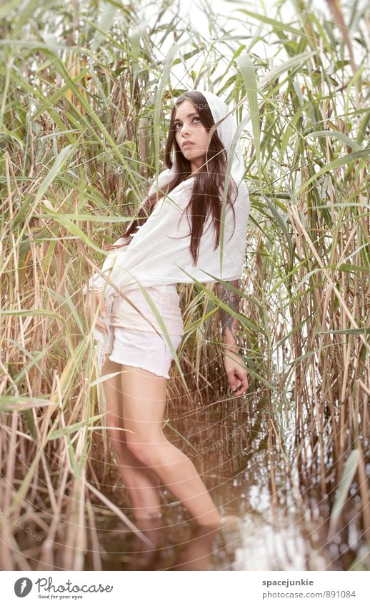 Human being Woman Nature Plant Beautiful Water Summer Young woman Landscape 18 - 30 years Eroticism Adults Autumn Feminine Lake Dream