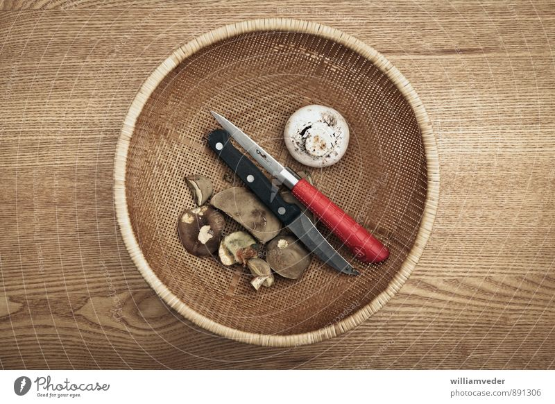 Mushrooms and knives in one basket Leisure and hobbies Vacation & Travel Trip Adventure Environment Nature Plant Mushroom picker Brown Yellow Gold Red Knives