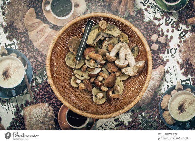 Basket with collected mushrooms Nutrition Leisure and hobbies Vacation & Travel Trip Adventure Freedom Nature Plant Mushroom Mushroom picker Sustainability