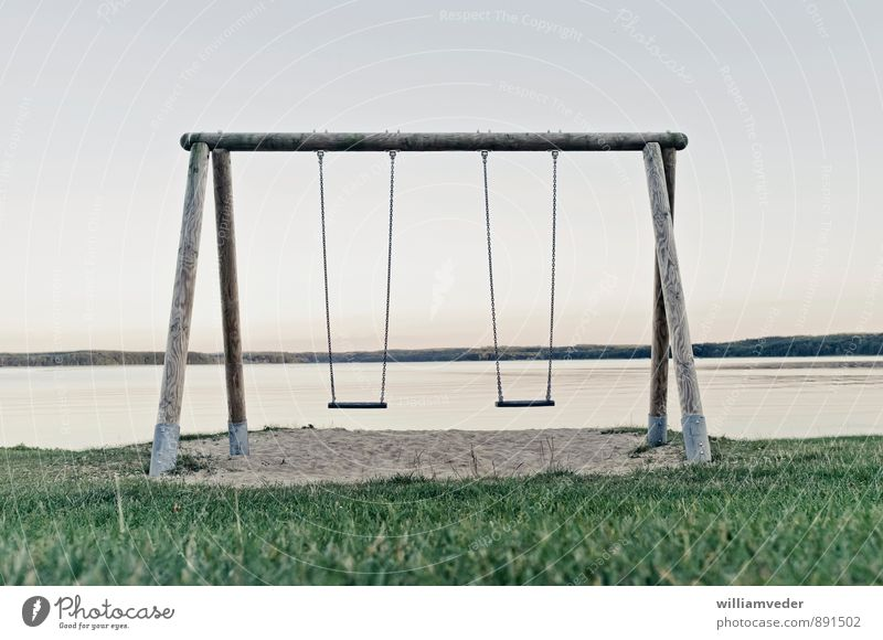 Swing at the lake Leisure and hobbies Playing Vacation & Travel Lake To swing Blue Gray Green Joy Infancy Past Transience Colour photo Subdued colour
