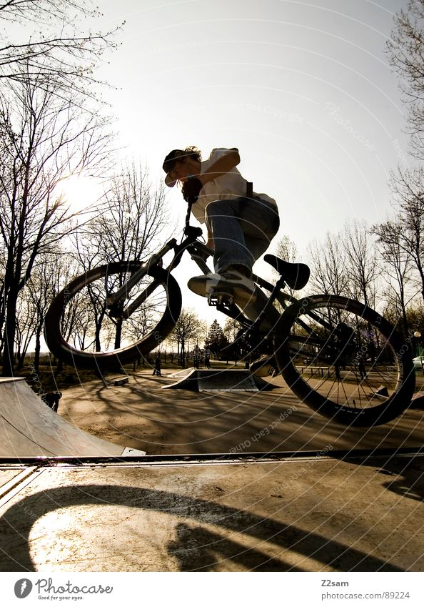 Youth (Young adults) Sky Tree Sun Summer Sports Jump Style Park Warmth Bicycle Tall Action Modern Dangerous Driving