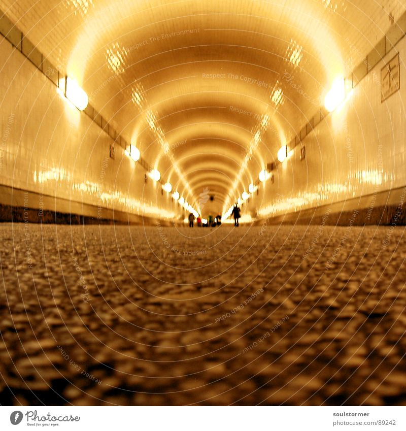 tunnel vision Tunnel Tar Deep Long Visual spectacle Worm's-eye view Pedestrian Neon light Claustrophobia Yellow Gray Light Wall (building) Narrow Reflection