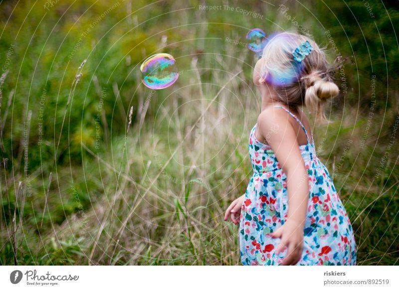 Catch soap bubbles Human being Feminine Child Girl Infancy 1 3 - 8 years Environment Nature Plant Summer Autumn Beautiful weather Garden Park Meadow Field