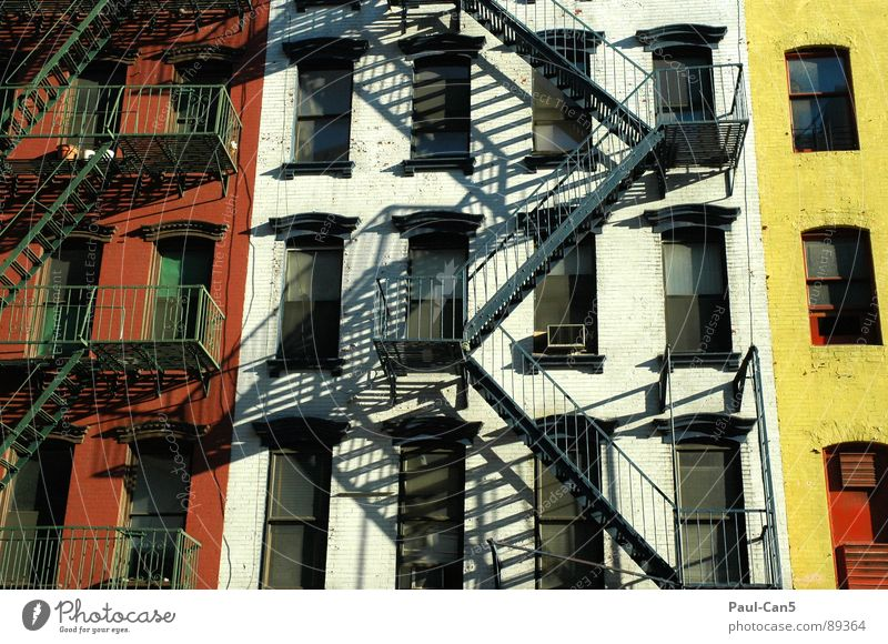 House (Residential Structure) Yellow Wall (building) Moody Architecture Safety Stairs USA New York City Backyard Grid Reddish white Fire ladder