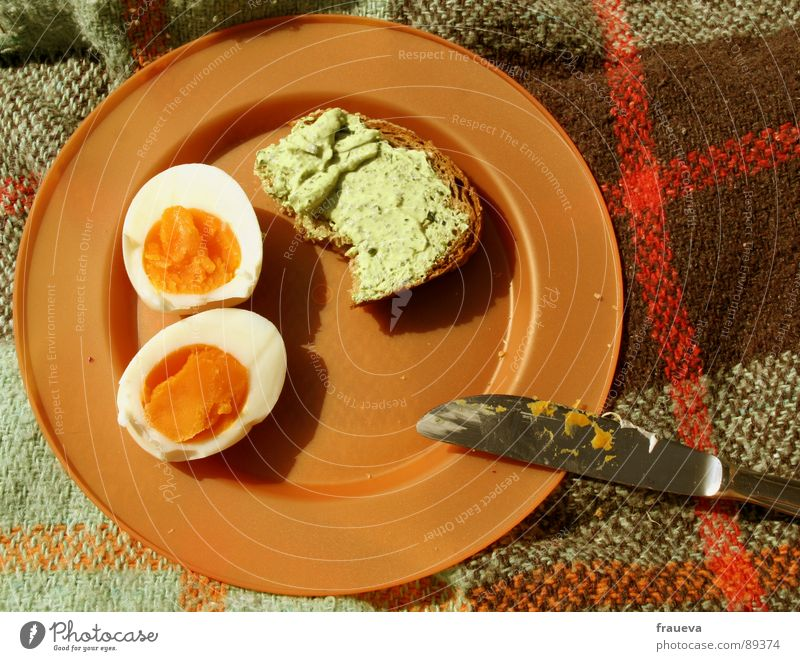Summer Nutrition Retro To enjoy Bread Statue Plate Egg Meal Checkered Blanket Knives Picnic Seventies Sliced Tupperware
