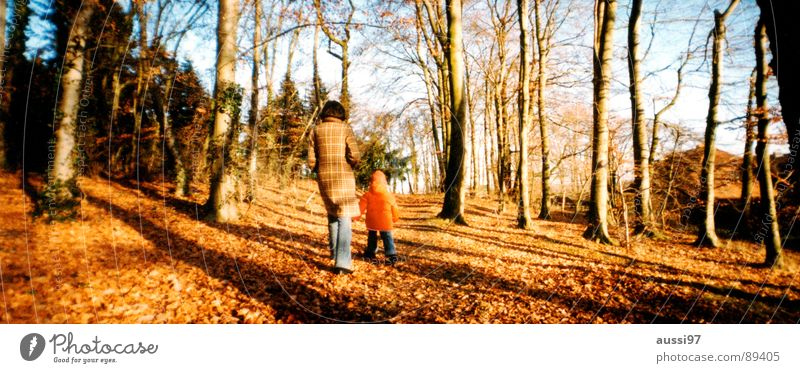 Child Tree Leaf Forest Autumn Sadness Large Family & Relations Mother To go for a walk Human being Panorama (Format) Parents Blues