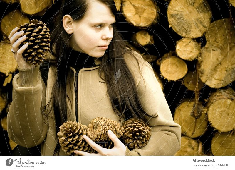 Woman Joy Wood Anger Throw Aggravation Attack Fir cone Defend Improvise Snowball fight