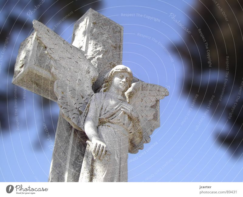 Sky Death Gray Stone Sadness Religion and faith Back Hope Grief Angel Peace Wing Transience Statue Distress Holy